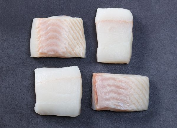 Fresh white halibut filet